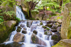 Beautiful Waterfalls in forest. Royalty Free Stock Photos