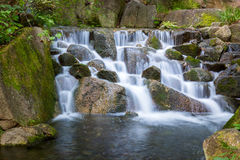 Beautiful Waterfalls in forest. Stock Image