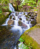 Beautiful Waterfalls in forest. Royalty Free Stock Image