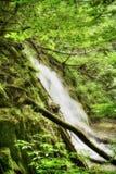 Beautiful waterfalls at Plitvice Lakes Stock Photo