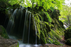 Beautiful waterfalls in spring. In the forest Stock Photography
