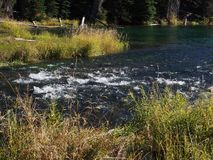 Stunning Deschutes River waters. The beautiful waters of the Deschutes River in the forests of Oregon stock images