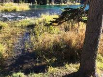Stunning Deschutes River waters. The beautiful waters of the Deschutes River in the forests of Oregon royalty free stock photos
