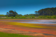 Beautiful watershed and marsh scenery Royalty Free Stock Images