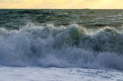 Beautiful wave beat on the beach Stock Photography