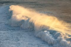Beautiful wave breaking with foam at the sunset. Beautiful wave breaking with golden foam at the sunset stock photos