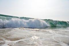 Beautiful wave in the ocean Stock Image