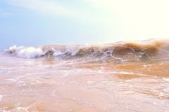 Beautiful wave in the ocean Royalty Free Stock Photos