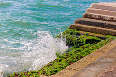 Beautiful waves splashed seaweed on the stairs Stock Photos
