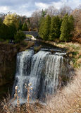 Beautiful Webster's falls Royalty Free Stock Photography