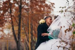 Beautiful wedding in autumn park Royalty Free Stock Photo