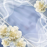 Beautiful wedding background Royalty Free Stock Photography