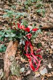 Beautiful wedding bouquet of different flowers lying on a log in the park. Autumn wedding Stock Images