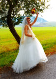 Beautiful wedding bouquet in hands of the bride, in Nature, Landscape background. Royalty Free Stock Image