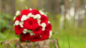 Beautiful wedding bouquet with red roses and rings stock video footage
