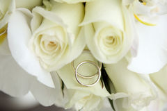 Beautiful wedding bouquet of roses and orchids and two gold and platinum wedding rings Stock Image