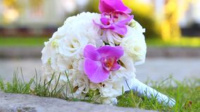 Beautiful wedding bouquet of white roses and pink orchids  for bride stock video