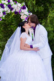Beautiful wedding bride and groom Stock Images
