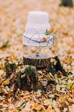 Beautiful wedding cake decorated with feathers. Autumn forest Stock Photos