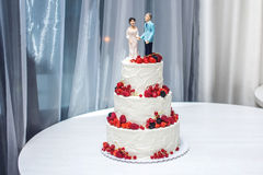 Wedding cake with figurines of the bride and groom on top decorated with strawberries on the tiers. Beautiful wedding cake with figurines of the bride and groom Stock Photos