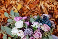 Beautiful wedding colorful bouquet for bride. Beauty of colored flowers. stock images