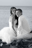 Beautiful wedding couple. Bride and groom hugging at the beach. Just married. Black and white, sepia Stock Images