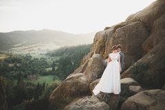 Beautiful wedding couple, bride and groom, in love on the background of mountains.  Royalty Free Stock Image