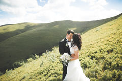 Beautiful wedding couple, bride and groom, in love on the background of mountains Stock Photography