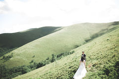 Beautiful wedding couple, bride and groom, in love on the background of mountains Royalty Free Stock Photo