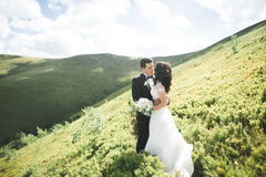 Beautiful wedding couple, bride and groom, in love on the background of mountains Royalty Free Stock Photos