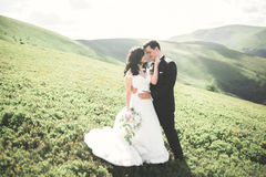 Beautiful wedding couple, bride and groom, in love on the background of mountains Royalty Free Stock Images