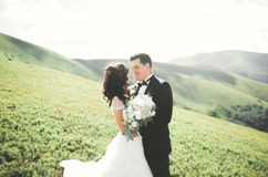 Beautiful wedding couple, bride and groom, in love on the background of mountains Stock Photos