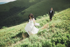 Beautiful wedding couple, bride and groom, in love on the background of mountains Royalty Free Stock Photography