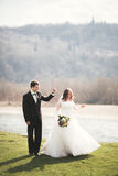 Beautiful wedding couple, bride, groom posing and walking in field against the background of high mountains Stock Photos