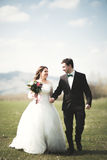 Beautiful wedding couple, bride, groom posing and walking in field against the background of high mountains Royalty Free Stock Photo