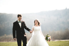 Beautiful wedding couple, bride, groom posing and walking in field against the background of high mountains Stock Image