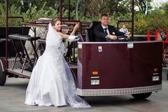 Beautiful wedding couple Stock Images