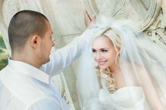 Beautiful wedding couple Royalty Free Stock Photography