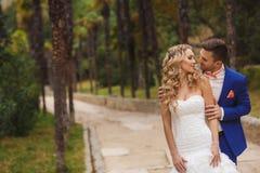 Beautiful wedding couple,happy bride and groom Stock Photo