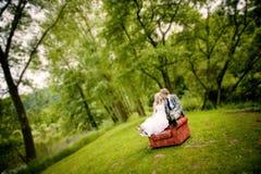 Beautiful wedding couple royalty free stock photo