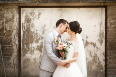 Beautiful wedding couple kissing near the old wall stock photo