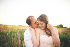 Beautiful wedding couple, love on the sunset. Fielf with flowers Stock Photography