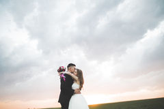 Beautiful wedding couple, love on the sunset. Fielf with flowers Royalty Free Stock Photography