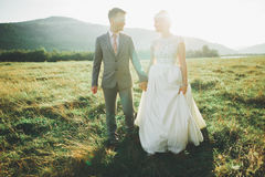 Beautiful wedding couple, love on the sunset. Fielf with view on mountains Royalty Free Stock Image