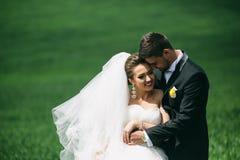Beautiful wedding couple on nature Royalty Free Stock Photos