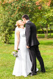 Beautiful wedding couple outdoors. They kiss and hug each other Royalty Free Stock Photos