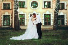 Beautiful wedding couple Royalty Free Stock Image