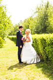 Beautiful wedding couple in park Royalty Free Stock Photos