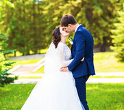 Beautiful wedding couple in park. They kiss and hug each other Stock Photography