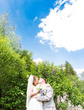 Beautiful wedding couple in park. They kiss and hug each other Royalty Free Stock Image